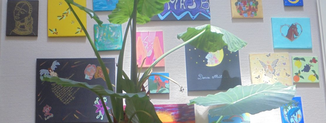 Photo d'une plante et d'un mur décoré de tableaux réalisé par les résidentes de la Maison d'accueil Jean Bru.