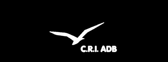 Logo du CRI-ADB en blanc sur fond transparent